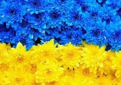 Расписание работы в день защитника Украины