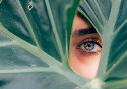 Синдром сухого глаза: причины возникновения