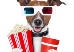 3D-кино ухудшает зрение