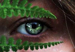Лечение роговицы глаза